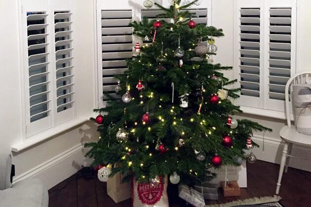 christmas tree shutters
